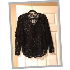 Ariella Black Velvet Sheer top